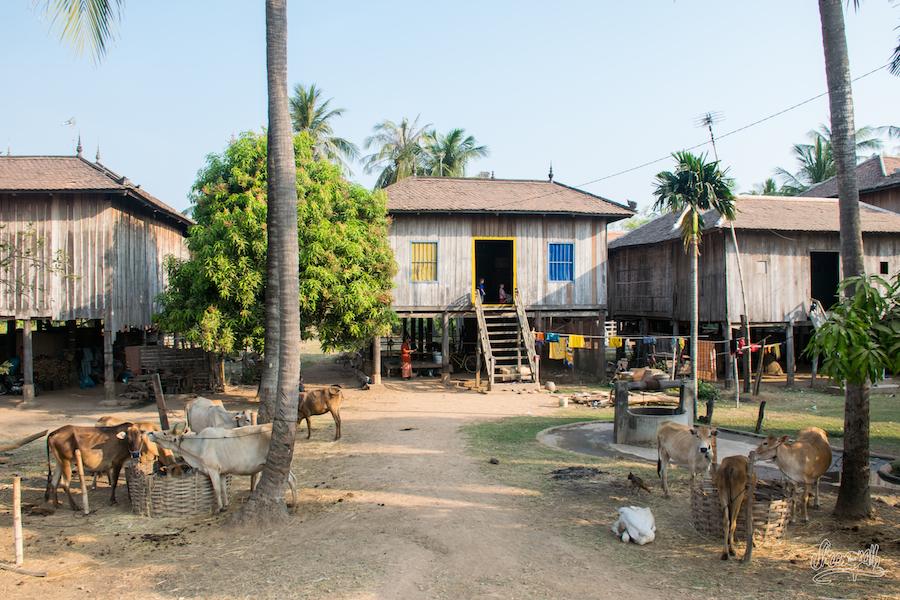 Charmant village des bords du Mékong