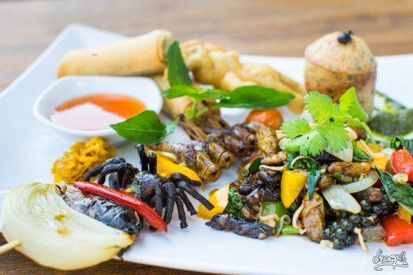 Le Plateau Découverte Du Bugs Cafe : Tarentules, Fourmis, Crickets, Vers, Puce D'eau Géante…