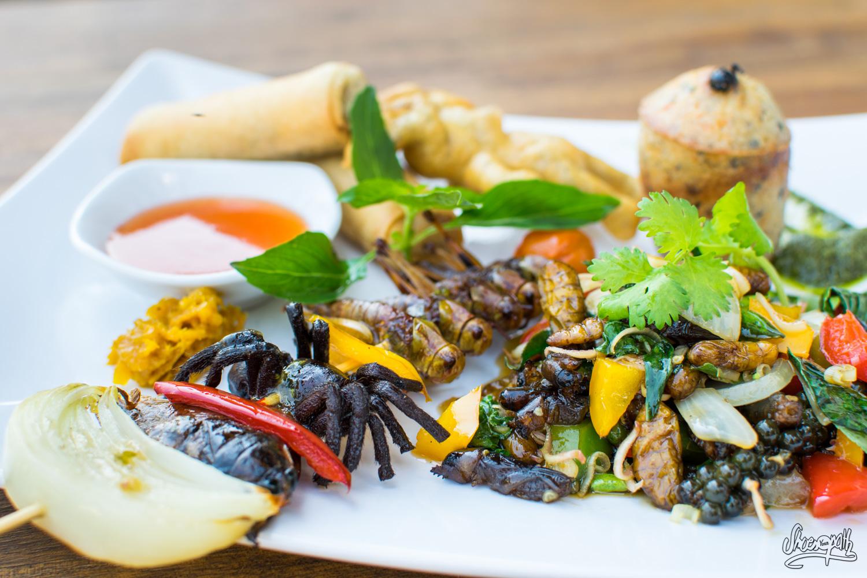 On A Testé – Le Menu Gastronomique à Base D'insectes Du Bugs Café à Siem Reap Au Cambodge