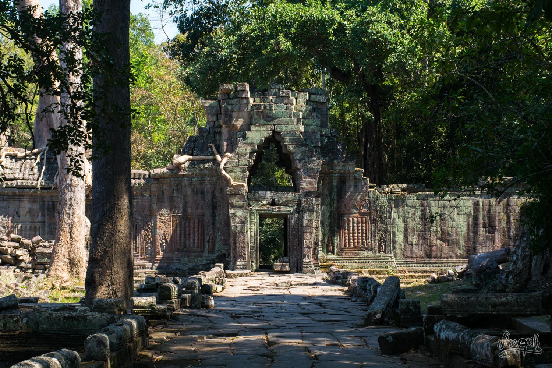 Dans la cour du temple de Preah Khan