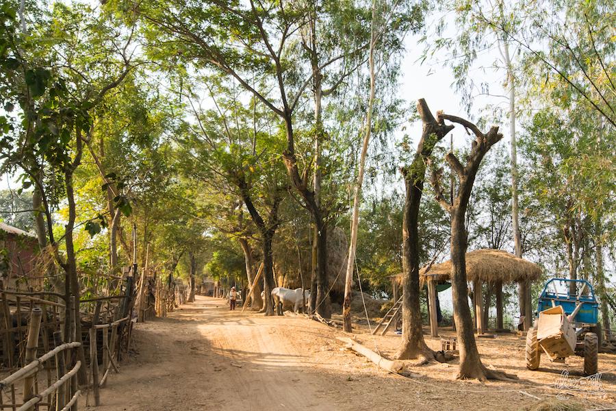 Sur Les Sentiers Du Mékong