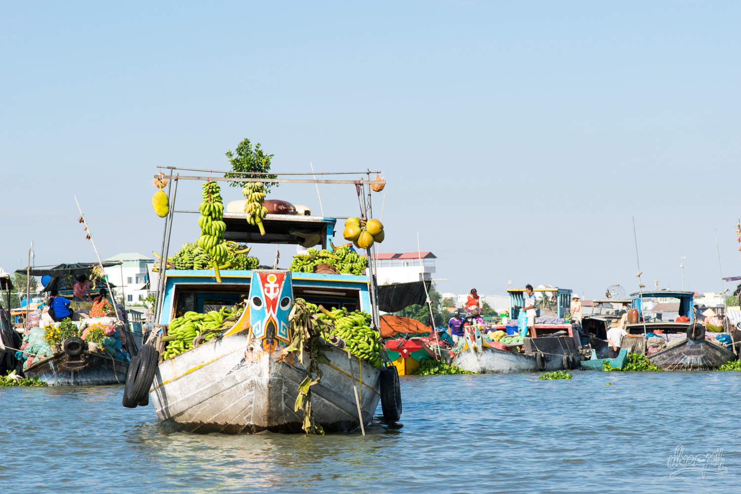 Sunny morning at Chau Doc floating market.