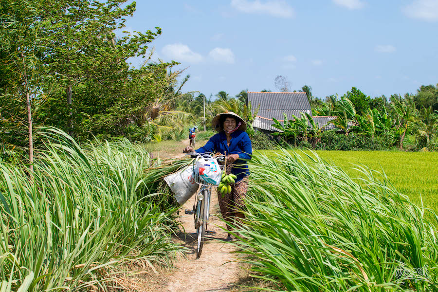 Dans le delta du Mékong, les vélos servent à tout transporter