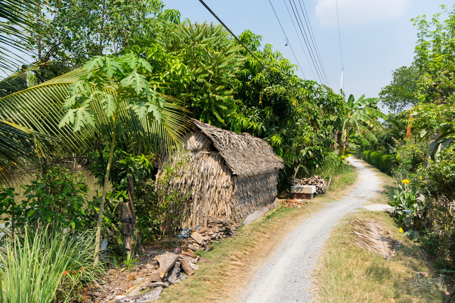 Small wooden and leaves house along the Mekong