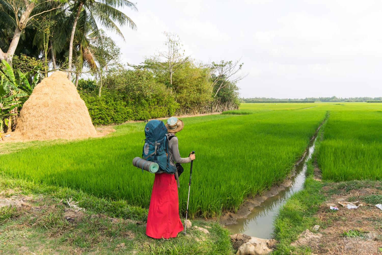 Perdus dans les rizières du delta du Mékong