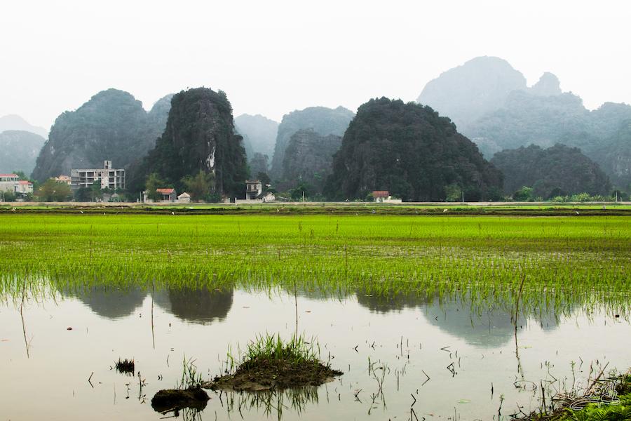 Petit village classique de la région de Ninh Binh