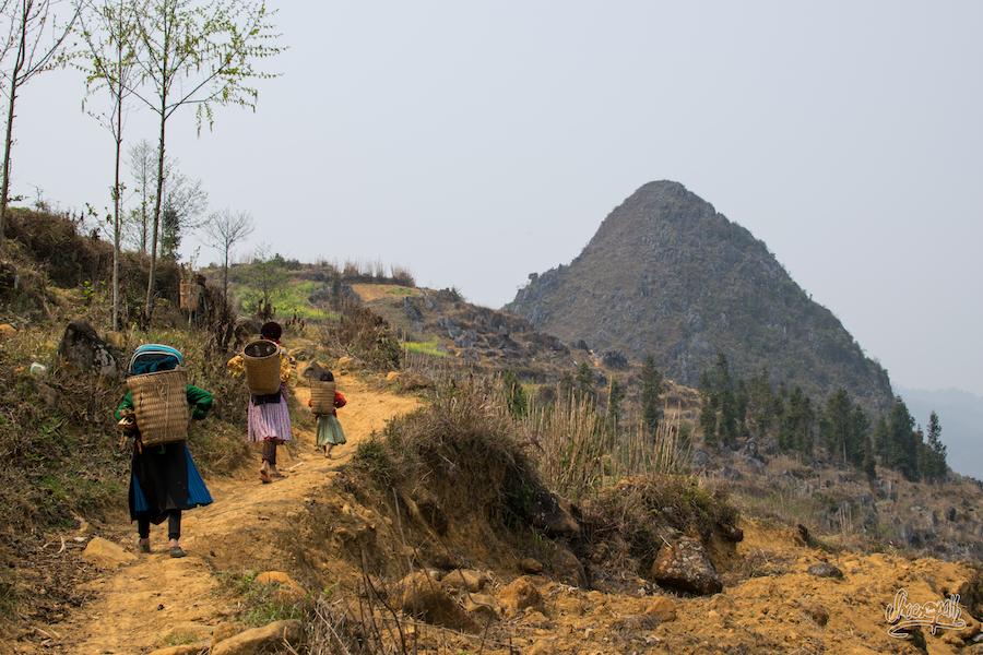 Invités à participer aux travaux des champs quelque part dans un village de montagne.