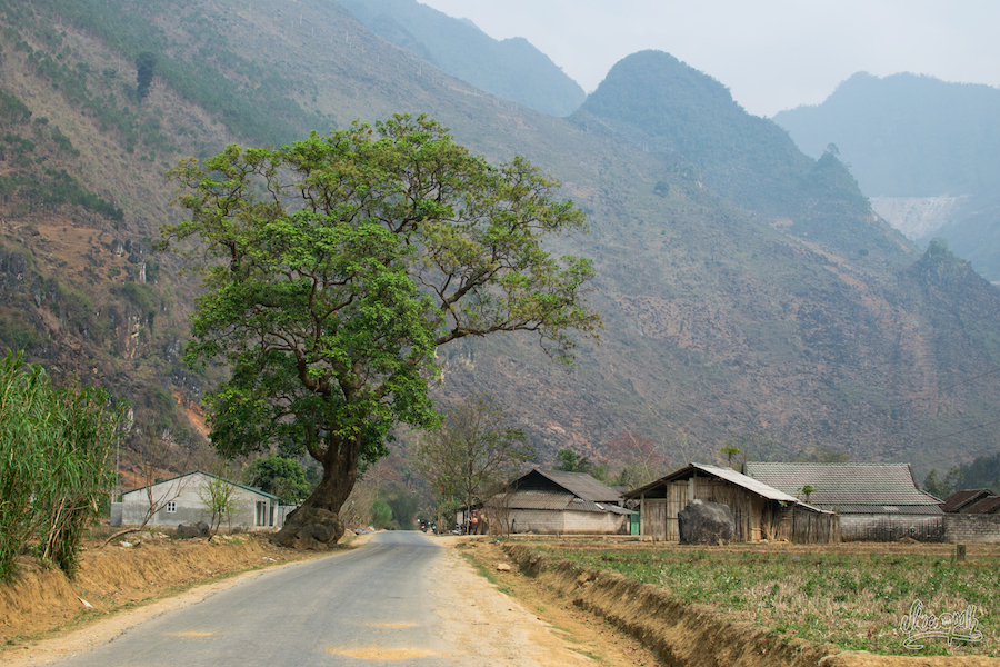 Petit Village Typique D'Ha Giang