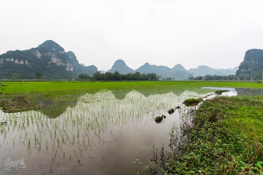 Panorama de Ninh Binh