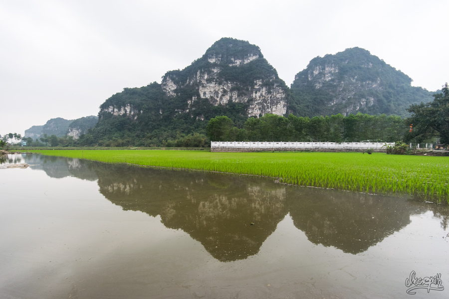 Panorama Classique De Ninh Binh