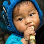 Canne à Sucre, Le Bonbon D'Asie Rurale