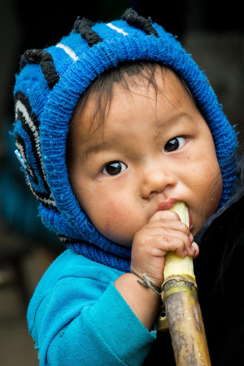 Le Bébé à La Canne à Sucre