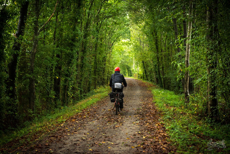 Sur la voie verte de la Véloscénie