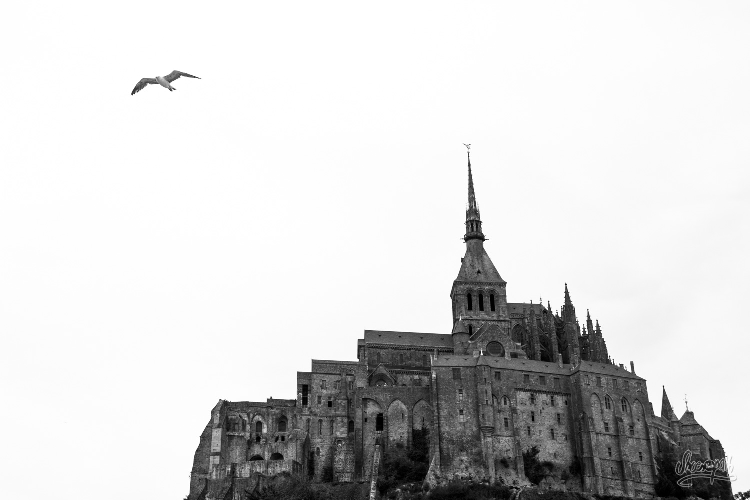 The Mont Saint-Michel !