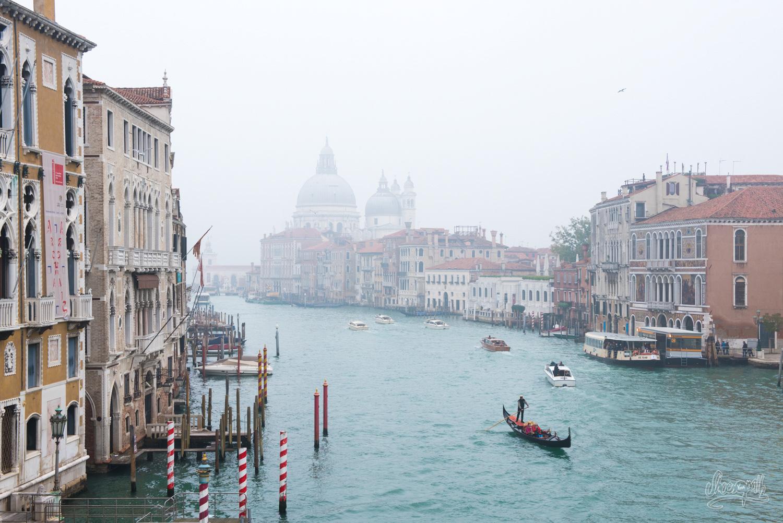 Le Grand Canal, vu depuis le Ponte dell'Accademia