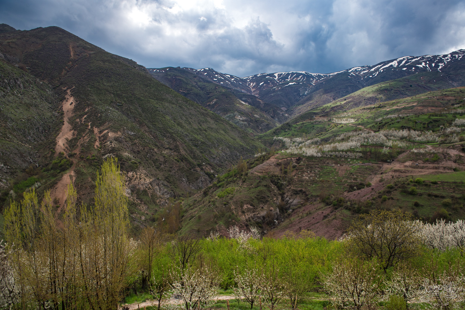 Alamut, vallée des assassins, Iran