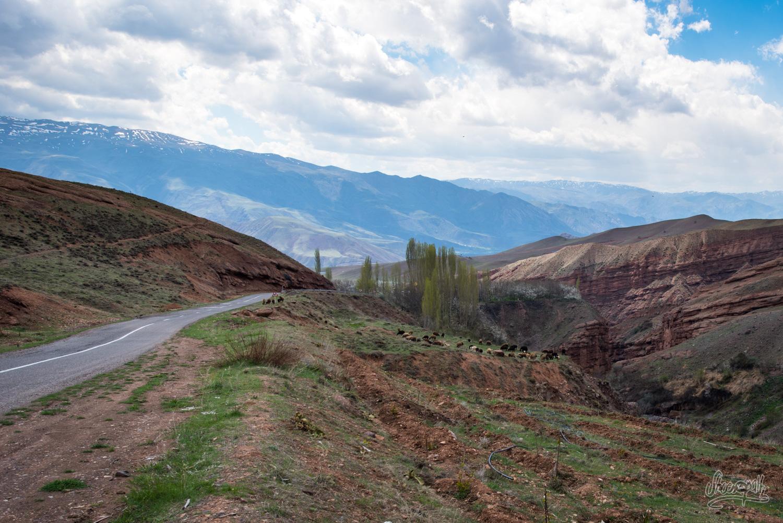 Alamut, vallée des assassins, Iran