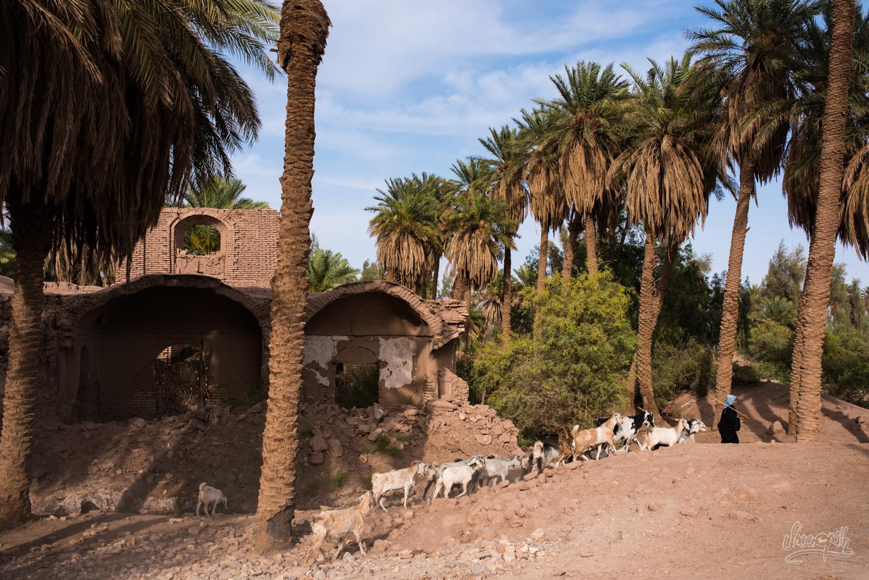 Dans un petit village perdu dans le désert de Lut