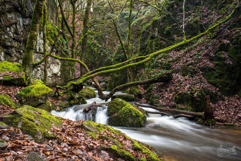 Cascade de la Dragne en pleine forêt du Morvan