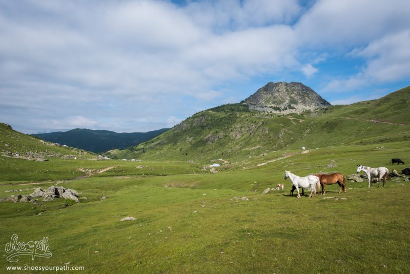 En Quittant La Vallée De Doberdöl, Au Départ De Notre 4ème étape De Peaks Of The Balkans
