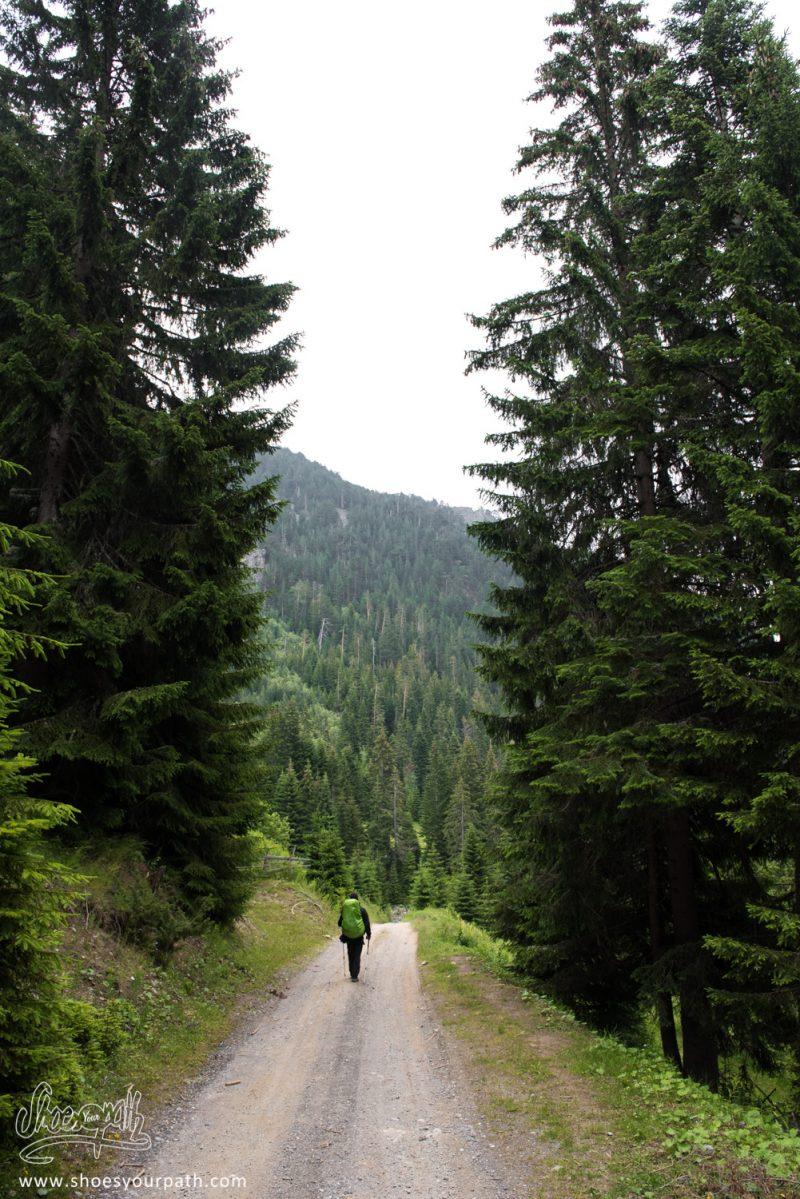Sur Le Chemin Qui Remonte Vers Milishevc - Peaks Of The Balkans