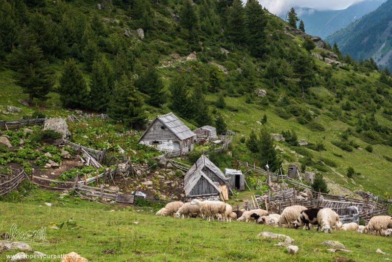 Chez Çamila Et Salè à Balqin