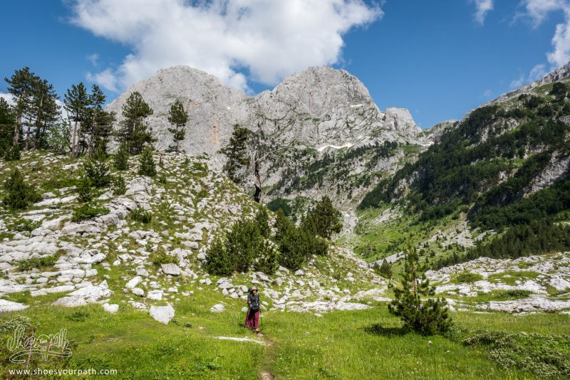 Sur Le Grand Plateau Herbeux Entre Vusanje Et Theth - Peaks Of The Balkans