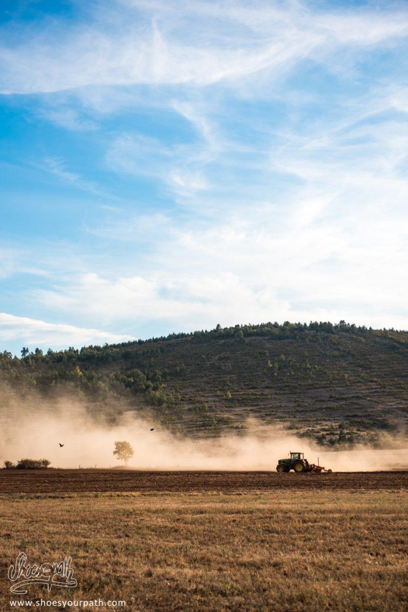 Activités Agricoles Sur Le Causse Méjean