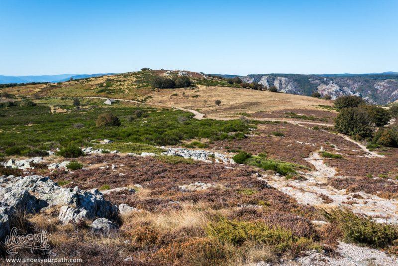 Au Sommet Du Mont Caroux - Haut Languedoc