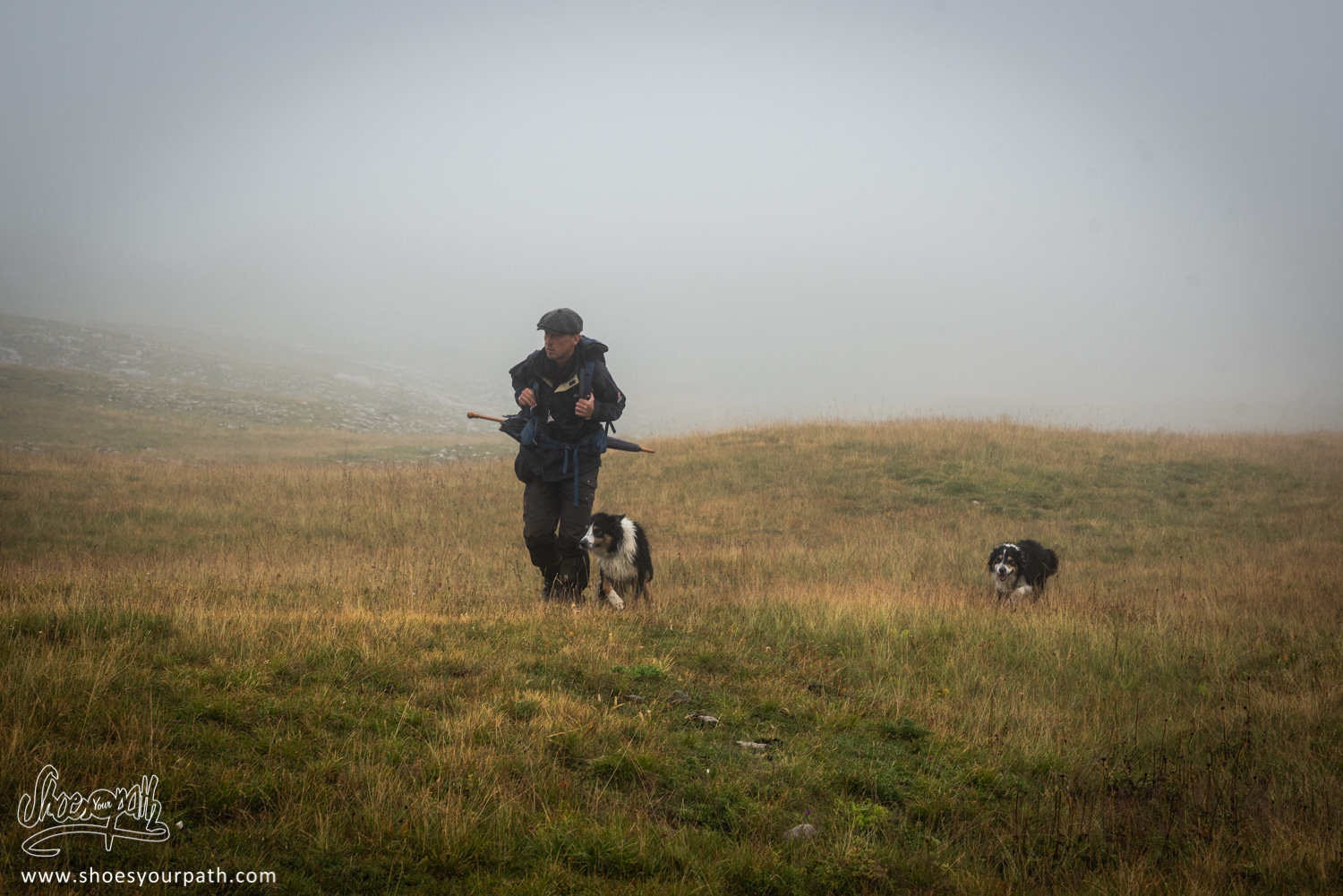 The shepherd and its dogs in the thick fog of the plateau du Vercors