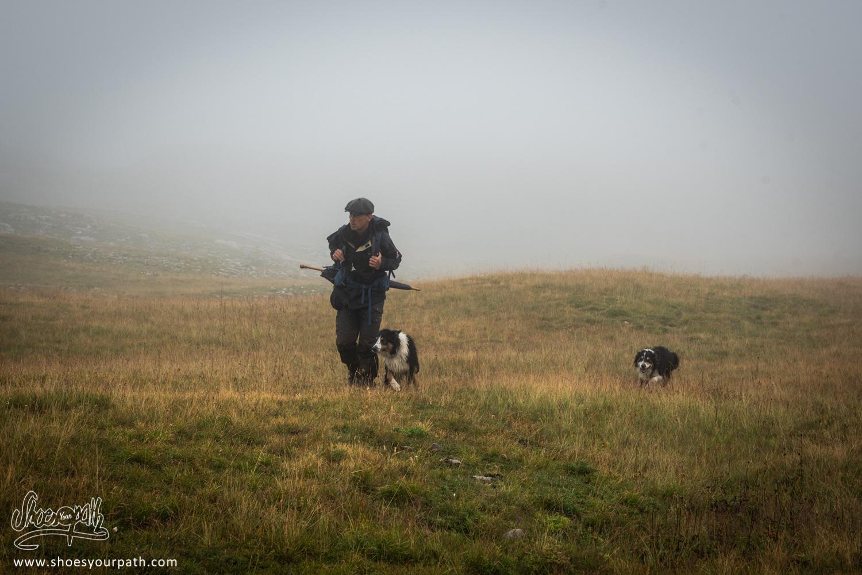 Le berger et ses chiens en plein brouillard sur les hauts plateaux du Vercors