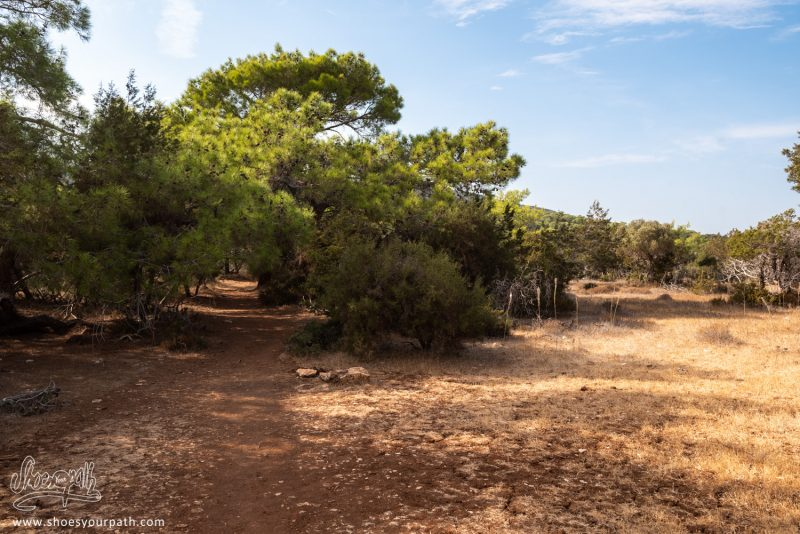 Le Soleil Tape Dur Alors Que Nous Grimpons Sur Le Adonis Nature Trail
