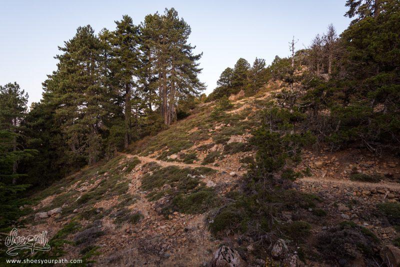 Le Atalanti Nature Trail Autour Du Mont Olympe - Troodos, Chypre
