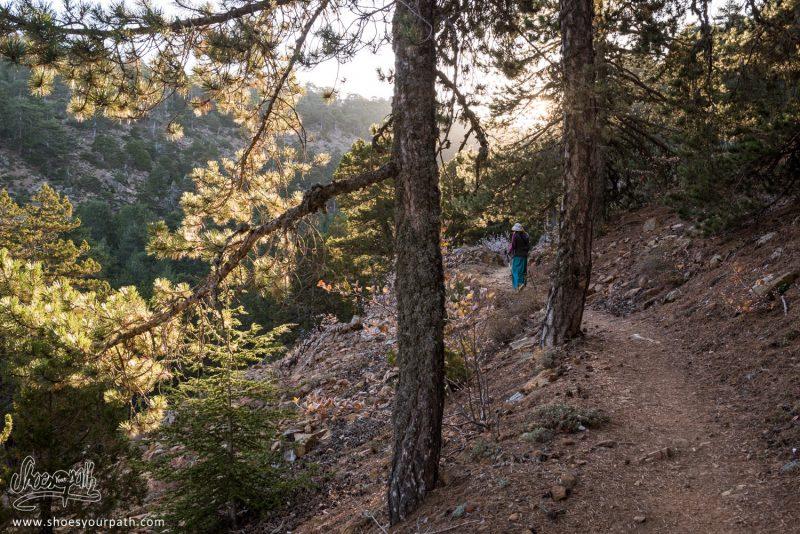 Mariette Dans Les Premières Heures Du Jour Sur Le Atalanti Nature Trail - Chypre