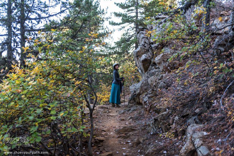 A L'ombre Des Forêts De Troodos Sur Le Atalanti Nature Trail