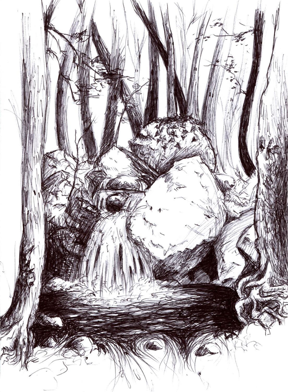 Aux alentours des Kalidonian waterfalls, la forêt dessinée par Mariette