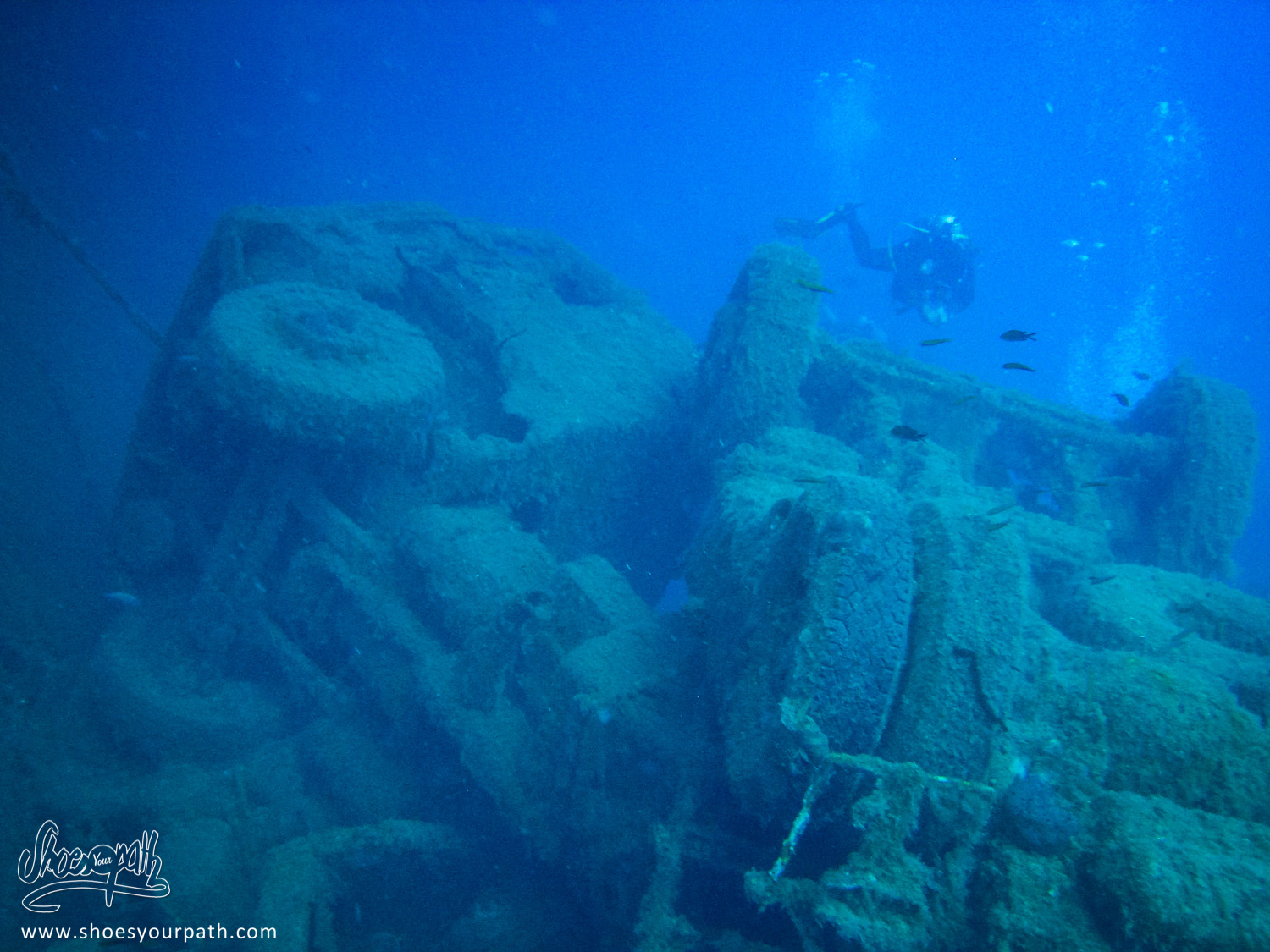 Some of the lories in the upper cargo part of the Zenobia - Cyprus