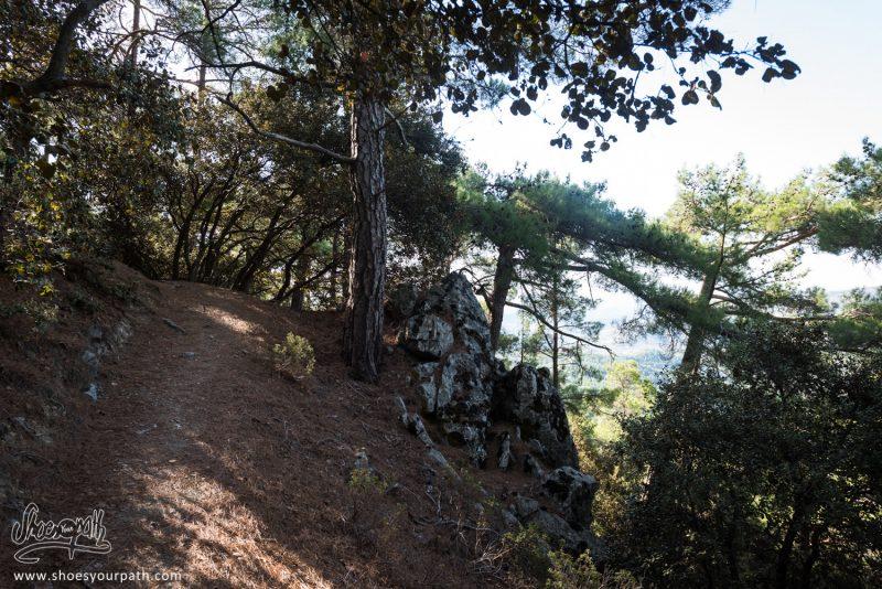 En Route Sur Le Pouziaris Nature Trail - Troodos, Chypre
