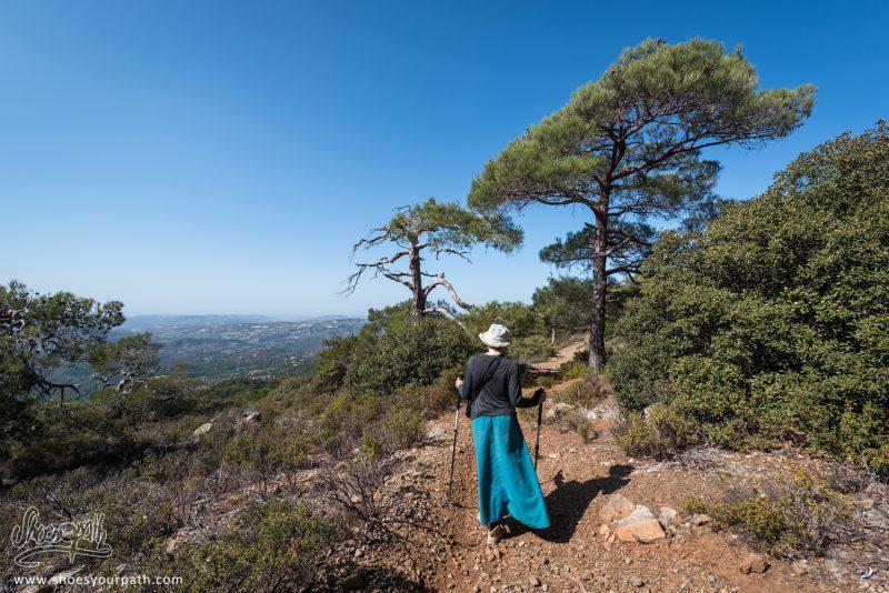 Sur Le Pouziaris Nature Trail, En Haut Du Massif De Troodos, Avec Une Vue Sur Tout Chypre.