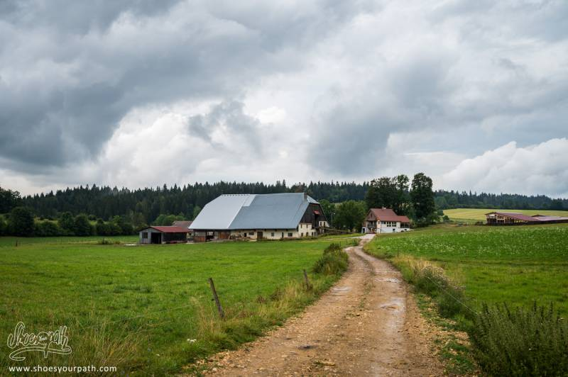 Sur Les Sentiers Du GR5 / GTJ, Les Fermes D'élevage Ponctuent Notre Chemin