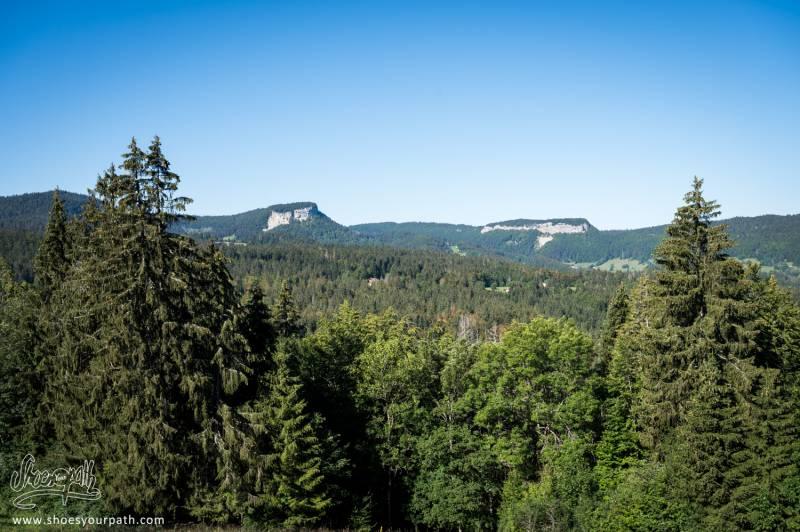 La Forêt Que Nous Traversons En Partant Des Rousses,