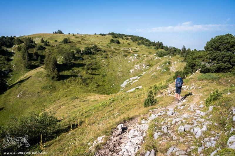 En Route Vers Le Crêt De La Neige Point Culminant Du Jura